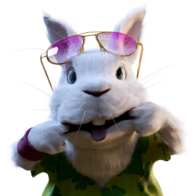bunny-testimonials